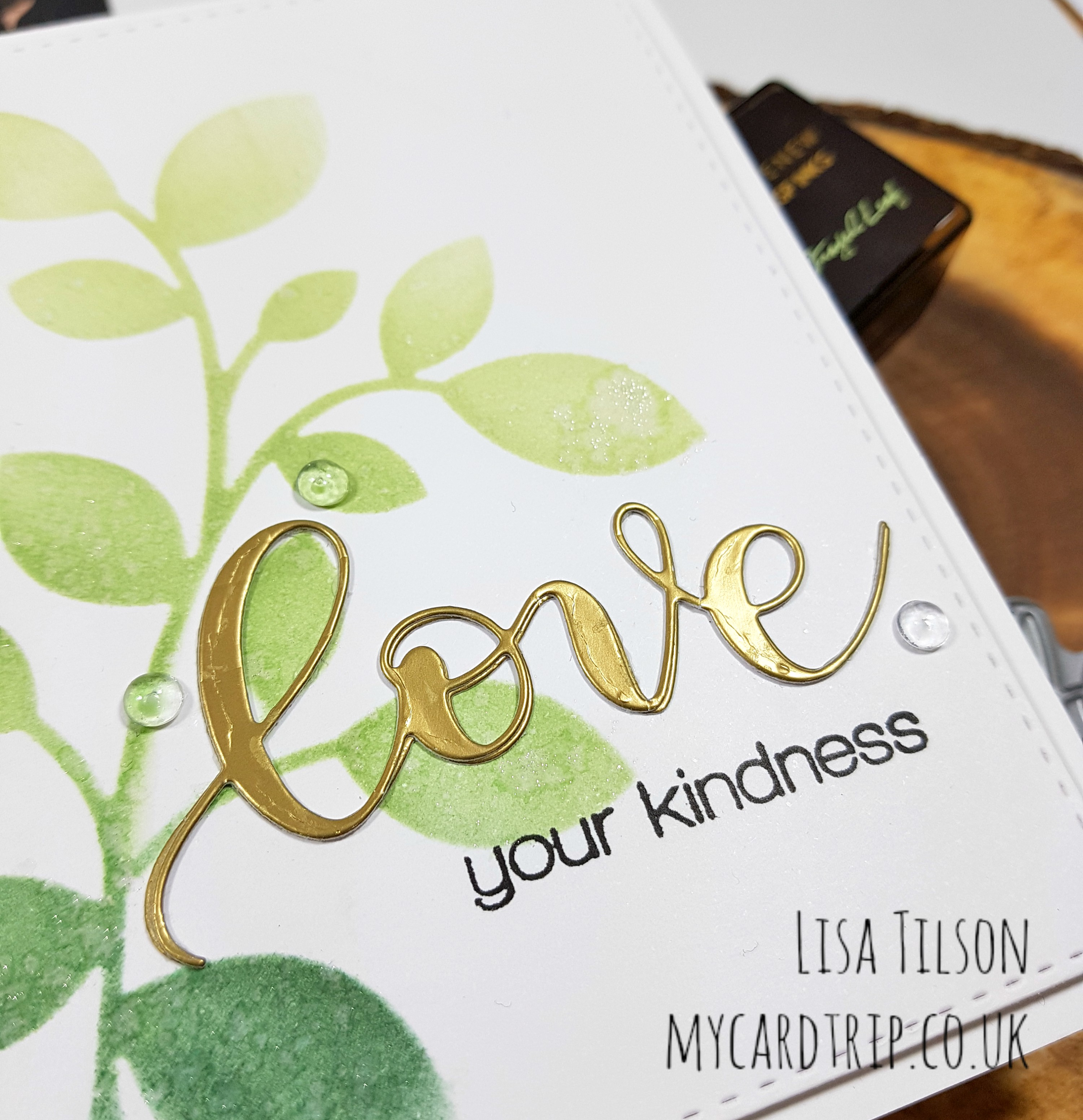 Love Your Kindness