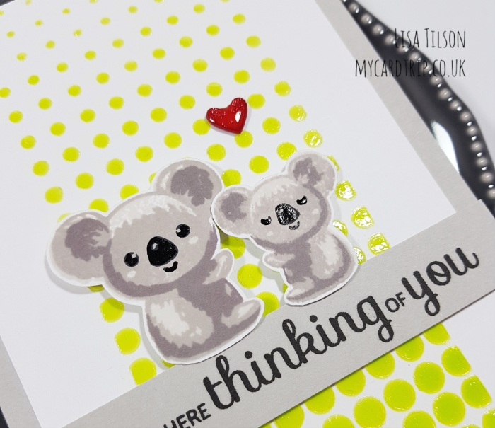 Clearly Besotted Teasers – Cute Koala