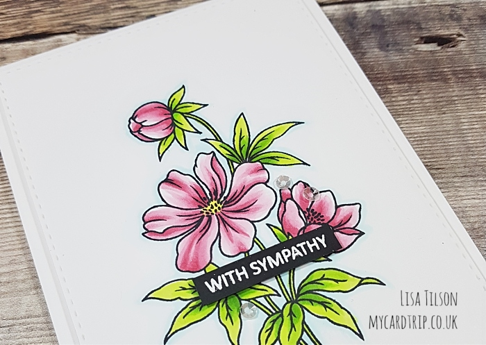With Sympathy – Perfect Peonies